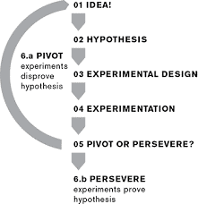 Pivot or perservere